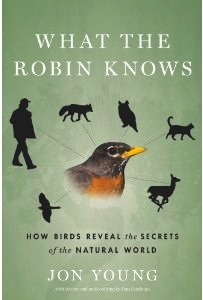 what-the-robin-knows-cover