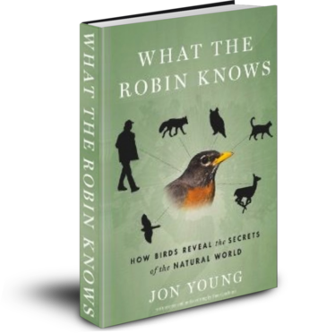 What-The-Robin-knows-Jon-Young