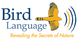 Bird Language